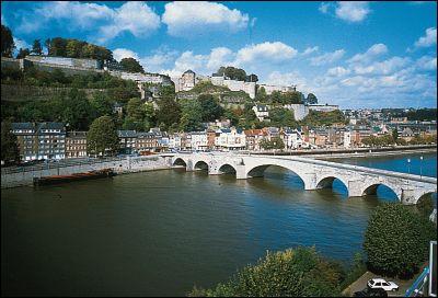 La Meuse prend sa source en France et traverse la Belgique et les Pays-Bas avant de se jeter dans la mer du Nord. Quelle ville belge arrose-t-elle ?
