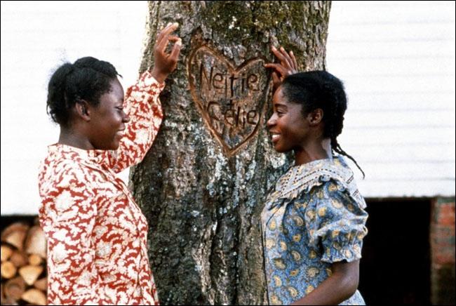 Ce film retrace l'histoire de deux soeurs, Celie et Nettie, dans le Sud profond des Etats-Unis. Elles sont séparées dès l'adolescence à cause de la brutalité du fermier qui a acheté Celie.
