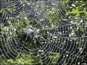 Quelle est la figure de style présente dans la phrase d'Honoré de Balzac  Les lois sont des toiles d'araignées, à travers lesquelles passent les grosses mouches et restent les petites.   ?