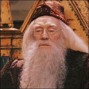 Qui joue le rôle de Dumbledore dans les deux premiers films ?