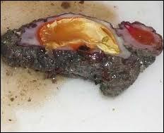 Quel coquillage comestible de la Méditerranée est appelé figue de mer ?