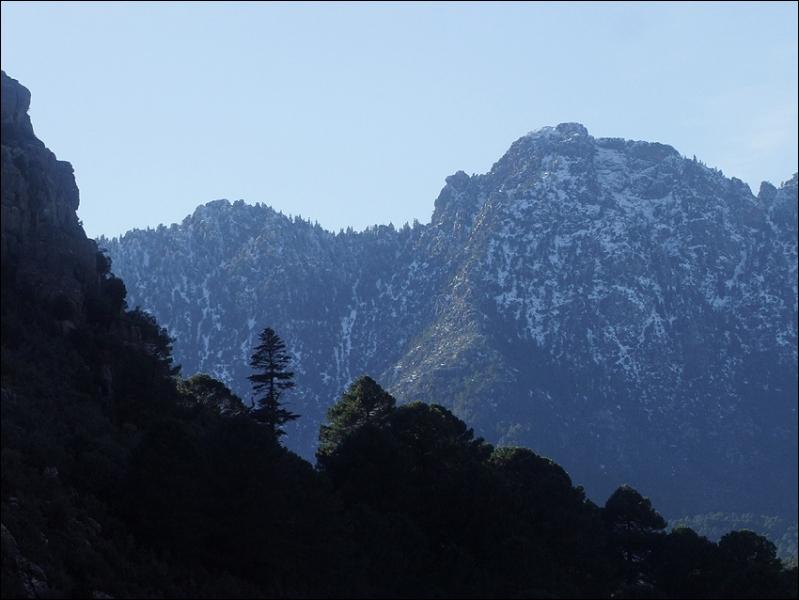 Dans ce parc national, le sapin, le cèdre et la roche forment un tout. Dans quel pays se trouve-t-il ?