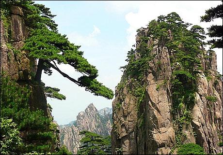 Les célèbres montagnes suspendues d'Avatar seraient inspirées de celles ci. Dans quel pays se trouvent-elles ?