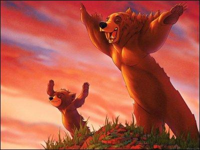 Qui est le petit ours sur cette image ?