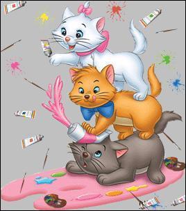 Qui sont les trois chatons sur cette image ?