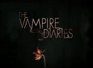 Que signifie Vampire Diaries ?