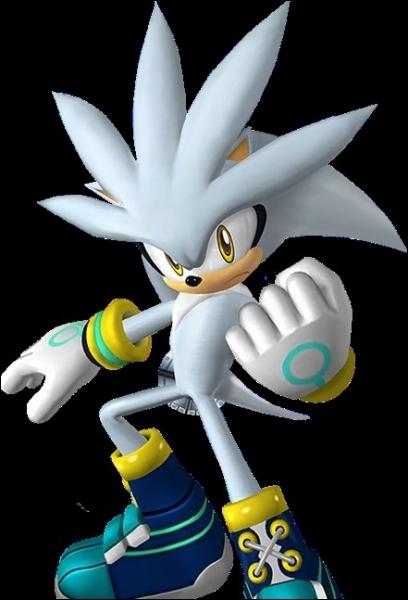 Quelle épreuve Silver pratique-t-il en équipe avec Blaze dans  Mario et Sonic aux Jeux olympiques d'hiver  sur DS, mode aventure ?