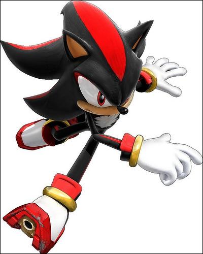 Shadow ressemble beaucoup à Sonic, cependant, son mode de déplacement est différent de celui du célèbre hérisson bleu. Quel est-il ?