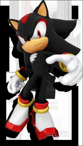 Shadow The Hedgehog est un jeu entièrement consacré à notre personnage favori. Mais en quelle année est-il sorti ?