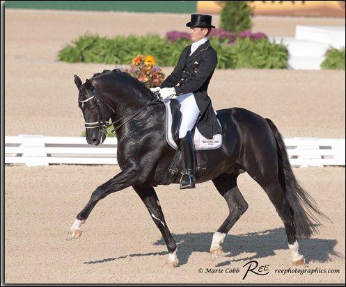 Comment s'appelle ce magnifique cheval de dressage, vendu entre 10 et 15 millions d'euros ?