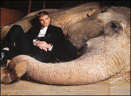 Et dans  De l'Eau pour les éléphants  ?