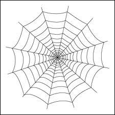 Quel est le point faible des toiles d'araignée ?