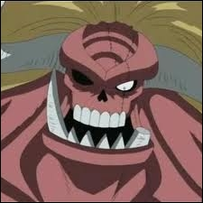 Qui possède l'ombre de Luffy ?