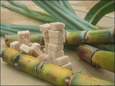 Géographie : En 1999, quel pays est le plus grand exportateur de sucre au monde ?