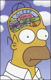 Quelle chose occupe une place essentielle dans le cerveau d'Homer ?