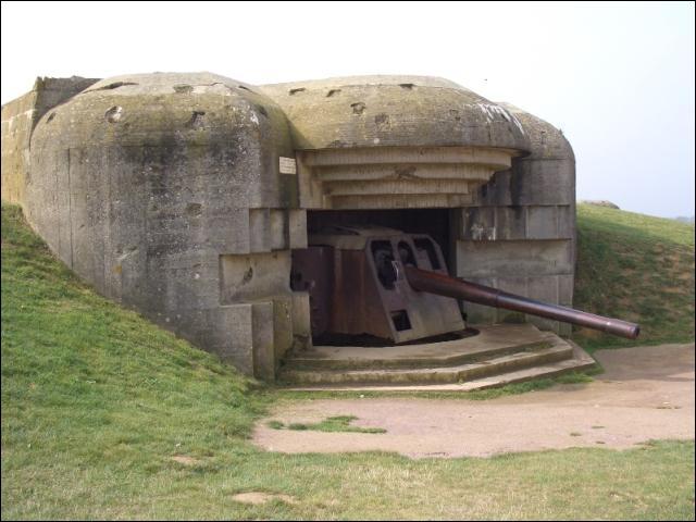 A pousser en grands nombres sur les côtes françaises durant la seconde guerre mondiale. Le...
