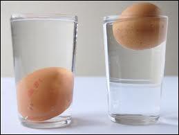 Que fait un œuf frais du jour plongé dans l'eau froide, salée (de préférence) ?