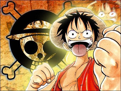 Quelle est la fonction de Monkey D. Luffy ?