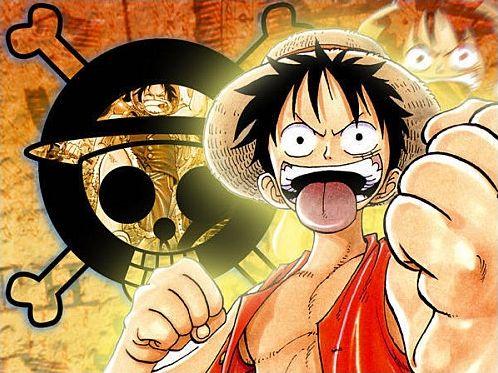 One Piece- Les fonctions de l'équipage