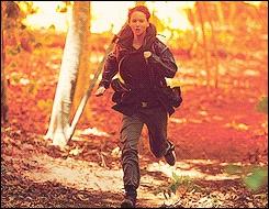 Avec qui Katniss s'allie-t-elle en premier ?