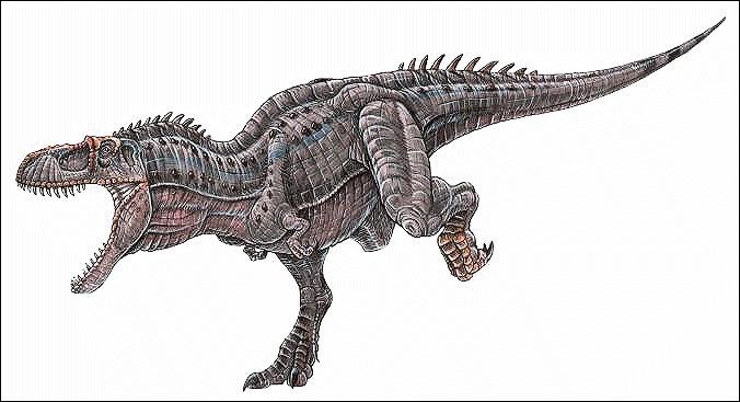 L'Albertosaurus vivait combien d'années environ avant notre ère ?
