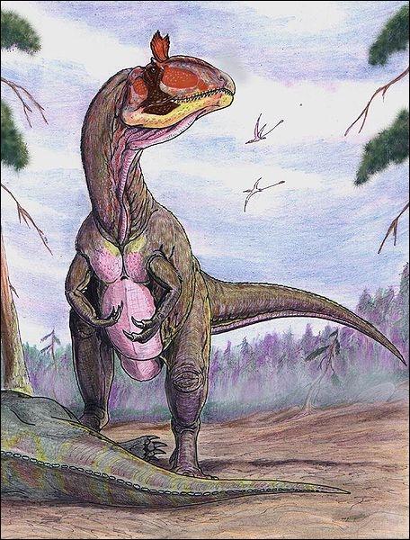 Quel est le seul dinosaure (connu à ce jour) dont on ait retrouvé les restes en Antarctique ?