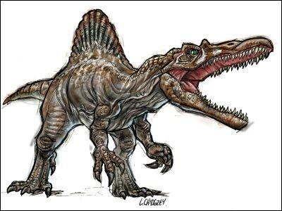 Quelle est la grande particularité physique de tous les spinosauridés ?