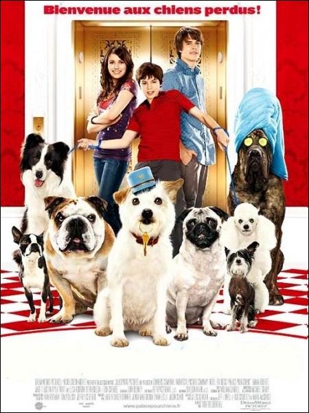 Deux adolescents orphelins récupèrent les chiens errants et les hébergent dans un hôtel abandonné... . Film de Thor Freudenthal de 2009 avec Emma Roberts, Jake T. Austin.