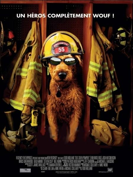 Un chien-star d Hollywood est adopté comme mascotte par une équipe de pompiers ... . Film réalisé par l'américain Todd Holland en 2007.