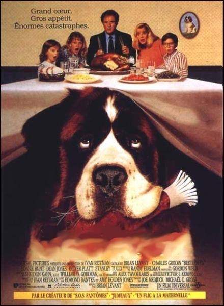 Film américain de Brian Levant sorti en 1992. Ce film raconte l'histoire d'un chiot saint-bernard qui, suite à un cambriolage dans l'animalerie échappe aux malfaiteurs ... .