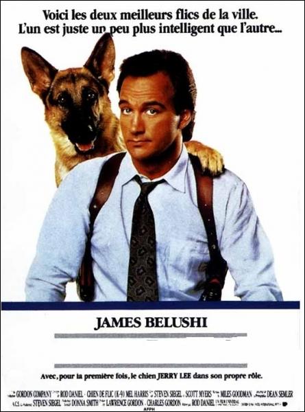 L'Inspecteur Mike Dooley doit contre son gré faire équipe avec un partenaire original : Jerry Lee, un berger allemand. Film américain réalisé par Rod Daniel en 1989.
