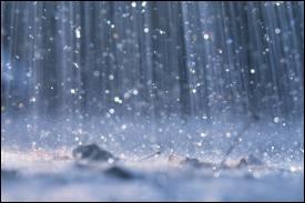 Cochez la suite : Pluie ...