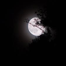 Nuit ...