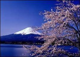 Les  Alpes  japonaises, avec les sommets de Hotoka Date (3190m), Ontake San (3063m) et le Mont Fuji (3776m), à quelques kms à peine de la mer, sont sur l'île de ?