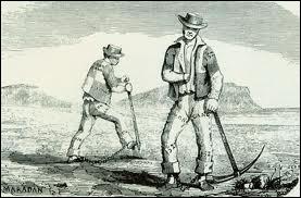 Les éleveurs conquirent le territoire australien, en poussant vers l'intérieur pour trouver des patûrages. Ils utilisaient les  convicts , les détenus, pour travailler. Depuis, le pays est encore le 1er producteur...