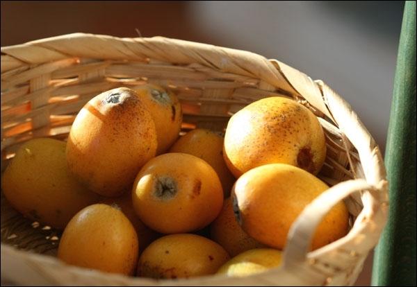 Question difficile, comment dit-on en maltais  nèfle  ?