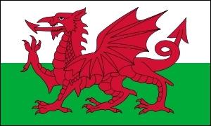 Drapeau celte  : A qui appartient ce drapeau ?