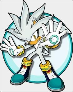 Quel est le type de pouvoir de Silver ?