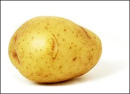 Une pomme de terre :