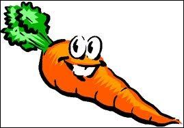 Une carotte :