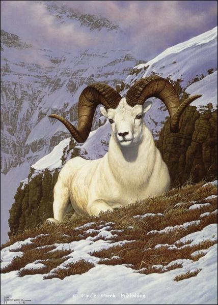 Cet animal vit en montagne, quel est son nom ?