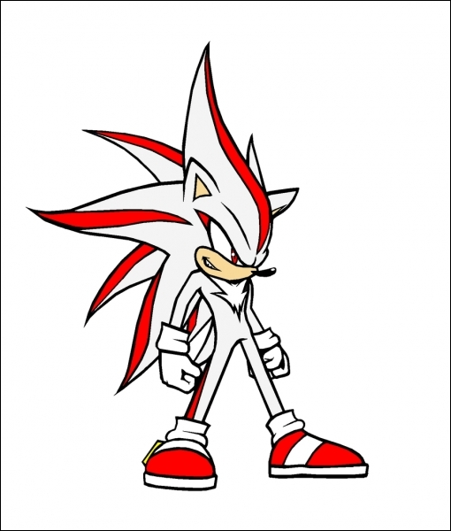 Et enfin, comment s'appelle la fusion de Sonic et Shadow ? (Personnage non officiel)