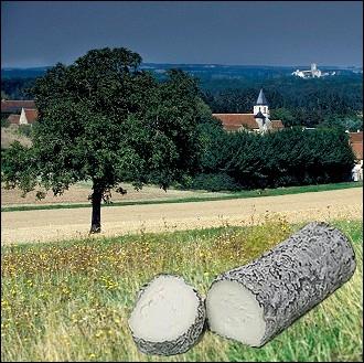 Fromage à base de lait de chèvre, à pâte fraîche, d'un poids moyen de 250 gr caractérisé par son allure cylindrique et son brin de paille de seigle produit dans le département de l'Indre-et-Loire...