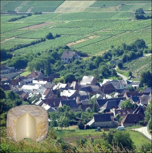 Fromage de chèvre originaire de l'ancien village berrichon situé dans la région Centre et la région naturelle du Sancerrois... .