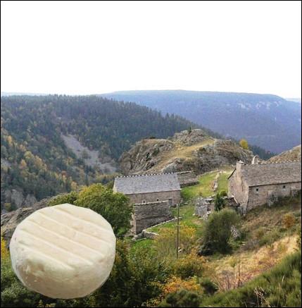 Petit fromage à base de lait de chèvre, à pâte molle à croûte naturelle, d'un poids moyen de 60 grammes, fabriqué dans les regions Languedoc-Roussillon et Cévennes ... .