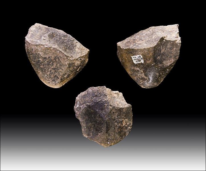 Outre les Paranthropus, quel homme préhistorique associe-t-on le plus souvent à la fabrication d'outils de pierre taillée ?