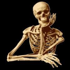 Quel est le plus petit os du corps humain ?