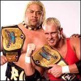 Combien de titres ont obtenus Scotty Too Hotty et Rikishi ?