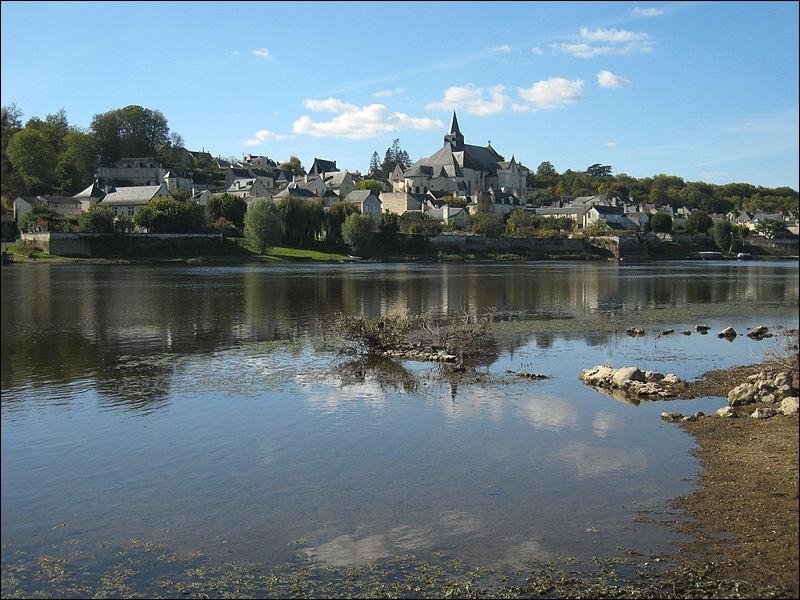 Au sud-est de Montsoreau et à la confluence de la Loire et de la Vienne, vous visiterez dans ce village une collégiale des XIIe et XIIIe siècles édifiée en place de la maison de Saint-Martin de Tours.
