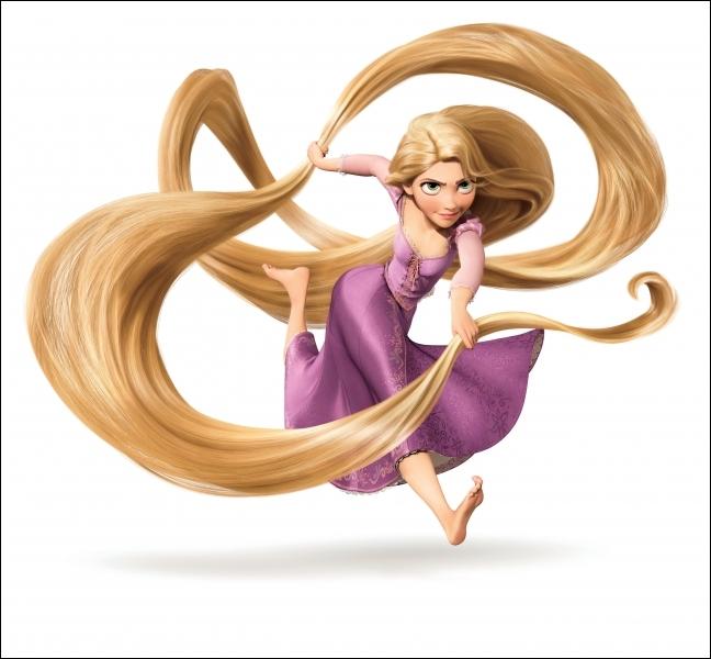 Dans quel dessin animé, une princesse à la longue chevelure est-elle l'héroïne ? (Illustration peut aider pour dire réponse)